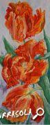 26-2018-jean_paul_furrasola-tulipes_perroquet-50x21_5